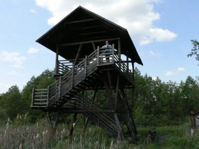 11. wieża obserwacyjna